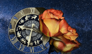 Astrological signs and flowers